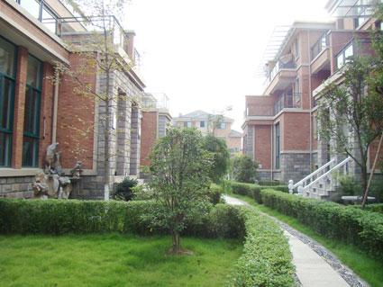 有120平方米左右,还有一个100多平方米的庭院,院子里种满了各种花木.图片